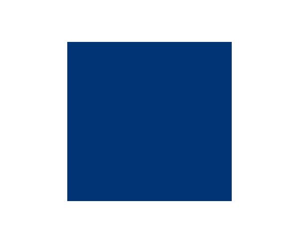 Carlton & United Breweries logo