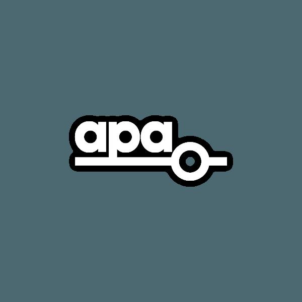 APA Group Business Logo
